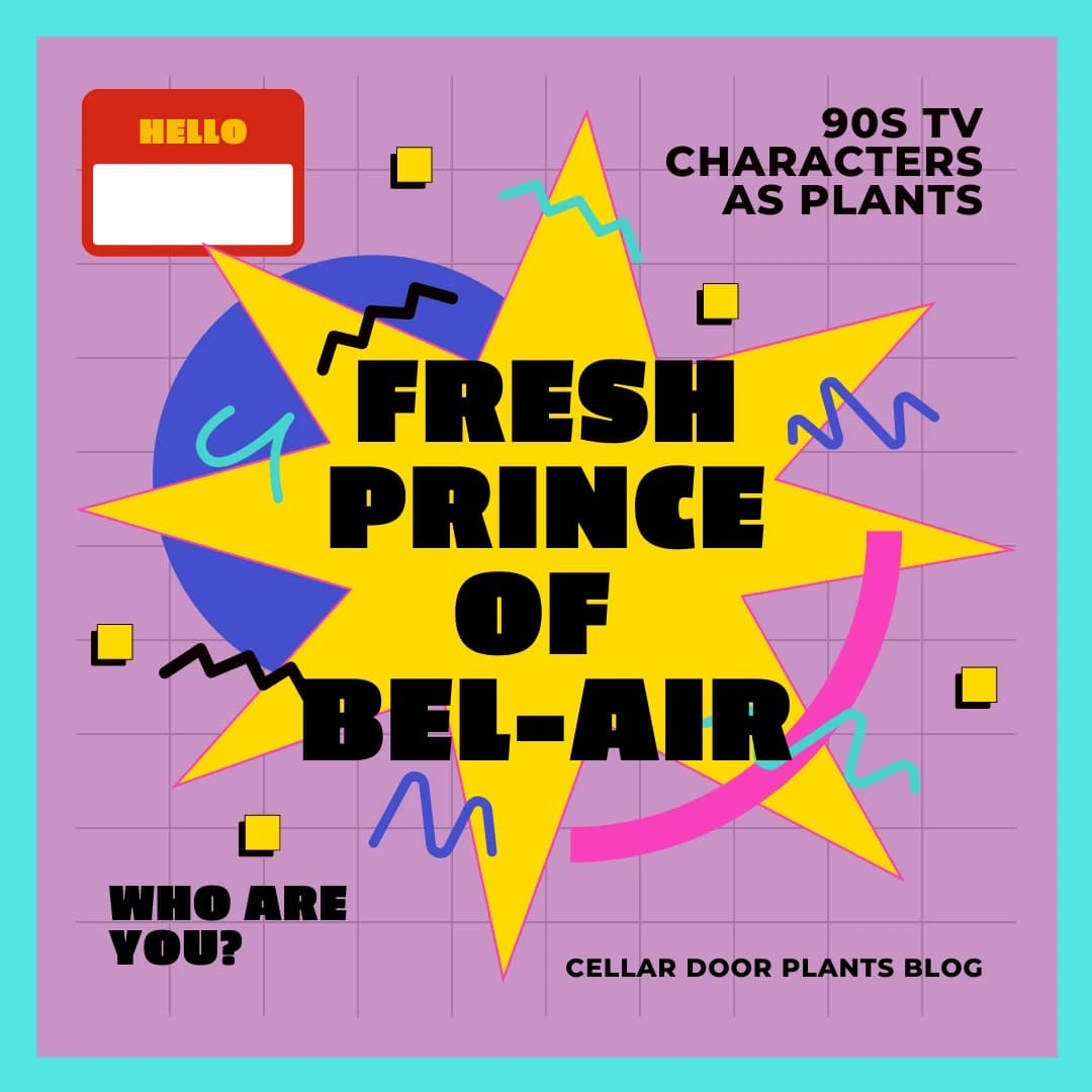 90s tv characters as plants fresh prince of bel air edition